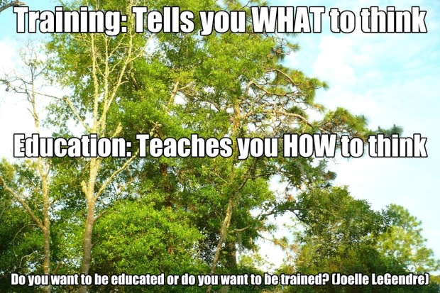 training vs education