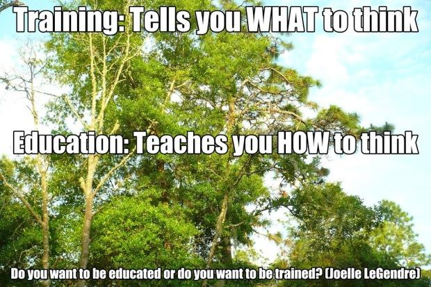 training vs education