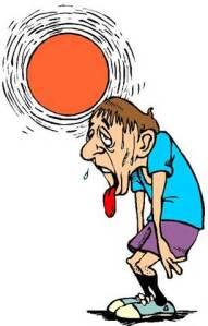 sun sentinal